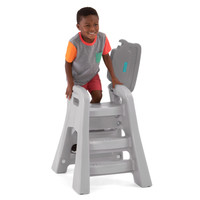 Big Kid Booster Chair