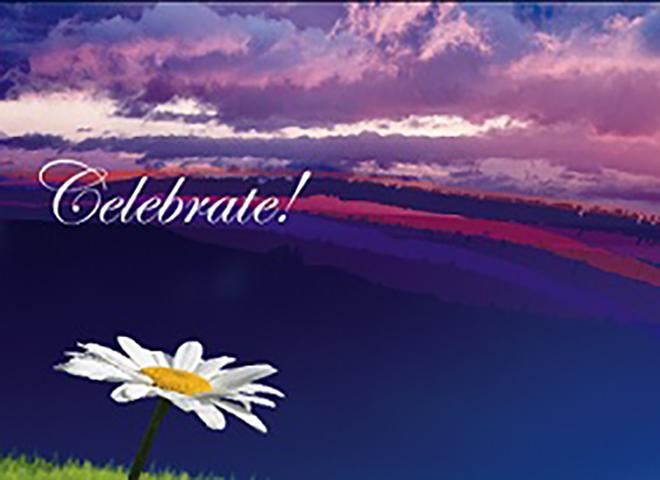 B9009 - Daisy Celebration
