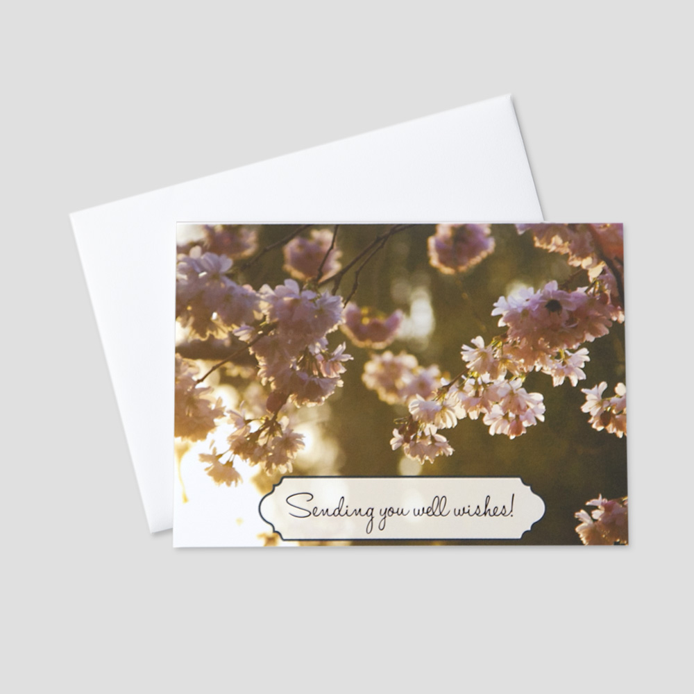 Business Get Well greeting card featuring budding flowers on a sunny day