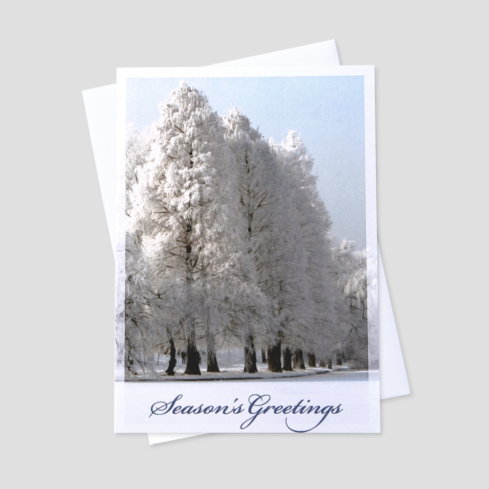 Professional Holiday greeting card with an image of snow covered trees in a snowy scene