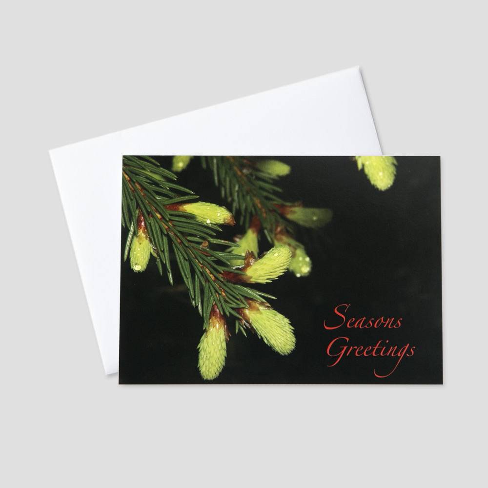Corporate Holiday greeting card with an image of a pine tree branch on a black background