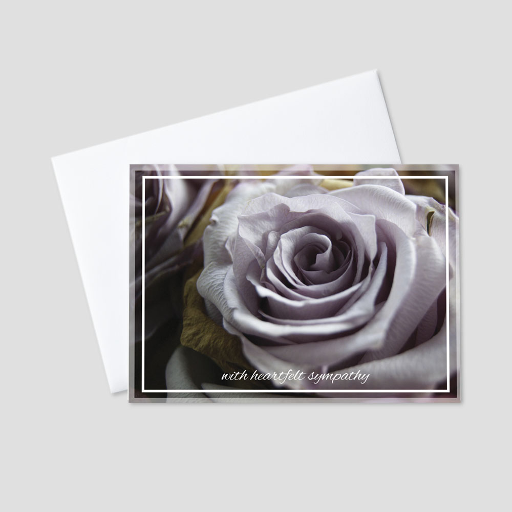 Business Sympathy greeting card featuring with heartfelt sympathy written on a purple rose background