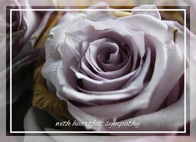 S1601 - Sympathy Rose