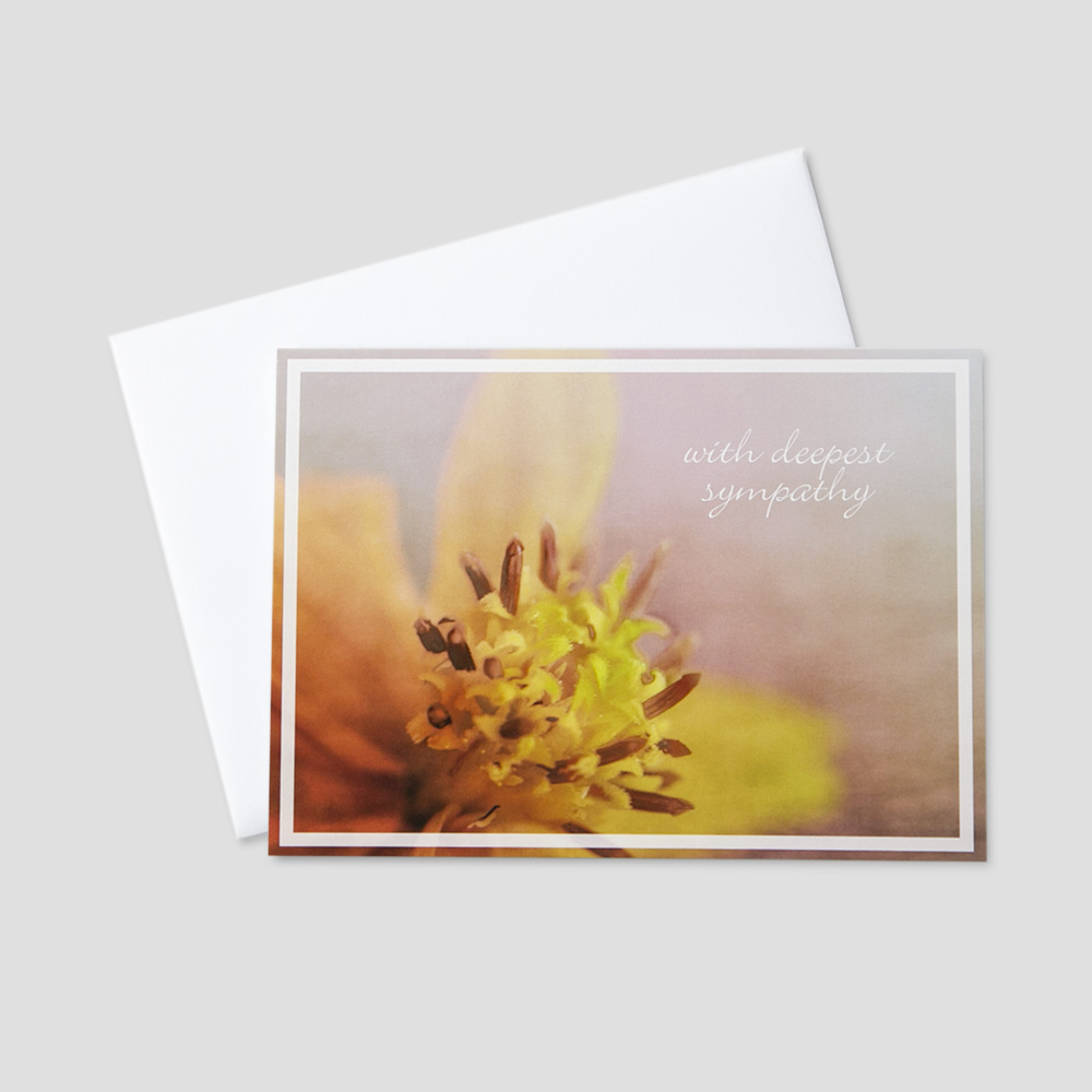 Employee Sympathy greeting card featuring with deepest sympathy written on a soft floral background