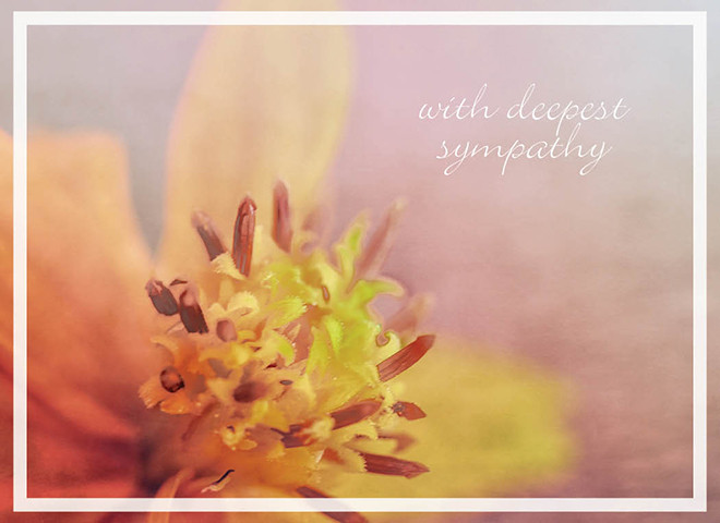S1702 - Soft Floral