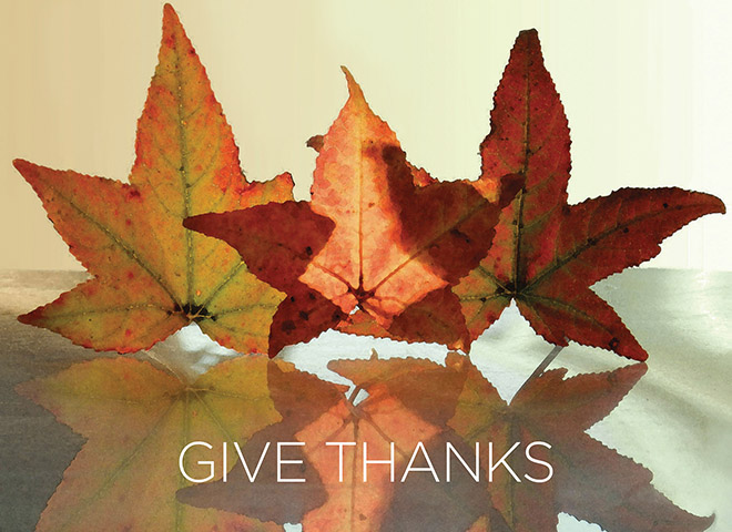TH1502 - Give Thanks with Leaves