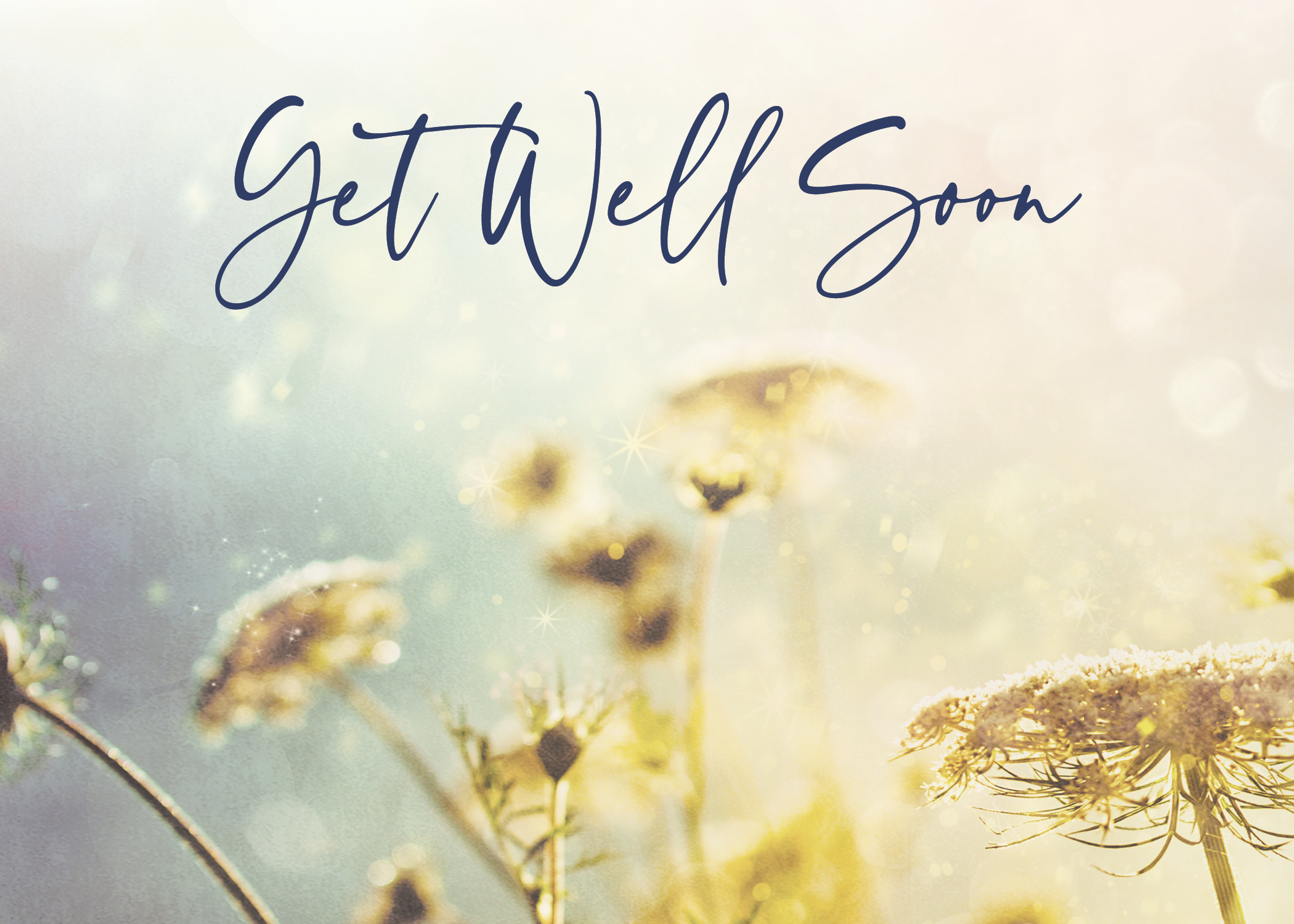GW2002 - Floral Well Wishes