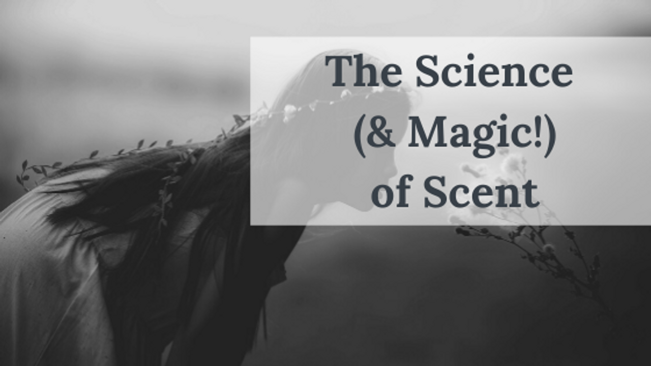 The Science (and Magic!) of Scent