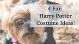 4 Fun Harry Potter Costume Ideas!