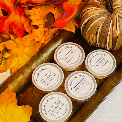 Fall Collection - Sample Set
