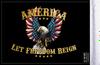 FLG-ALFR  America Let Freedom Reign flag 6x9 (BACK)
