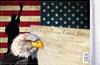 FLG-CONEG  USA Eagle & Constitution flag 6x9 (BACK)