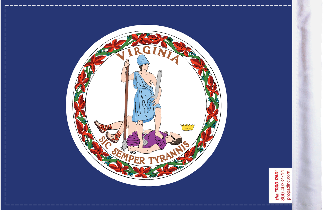 FLG-VA  Virginia Flag 6x9 (BACK)