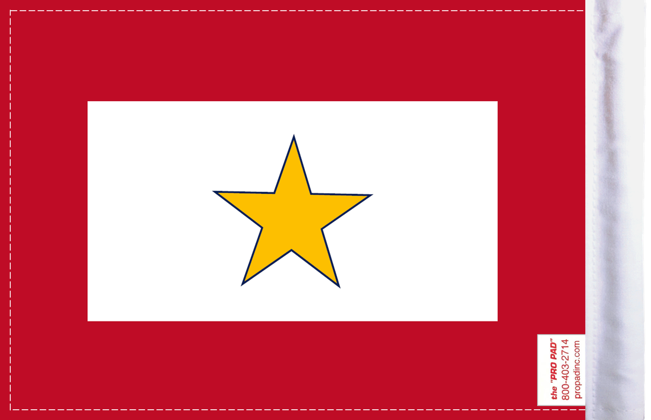 FLG-GS  Gold Star Service 6x9 flag (BACK)