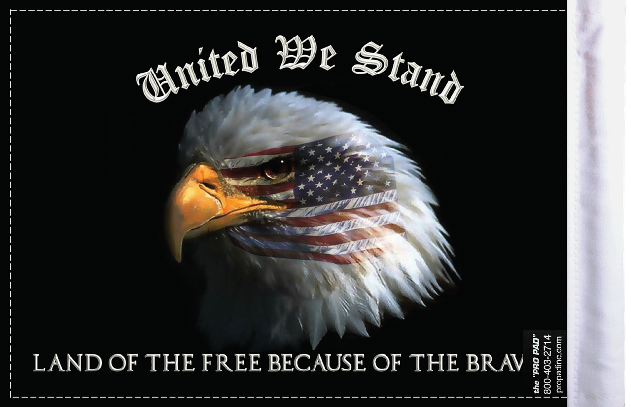 FLG-UWS  United We Stand flag 6x9 (BACK)