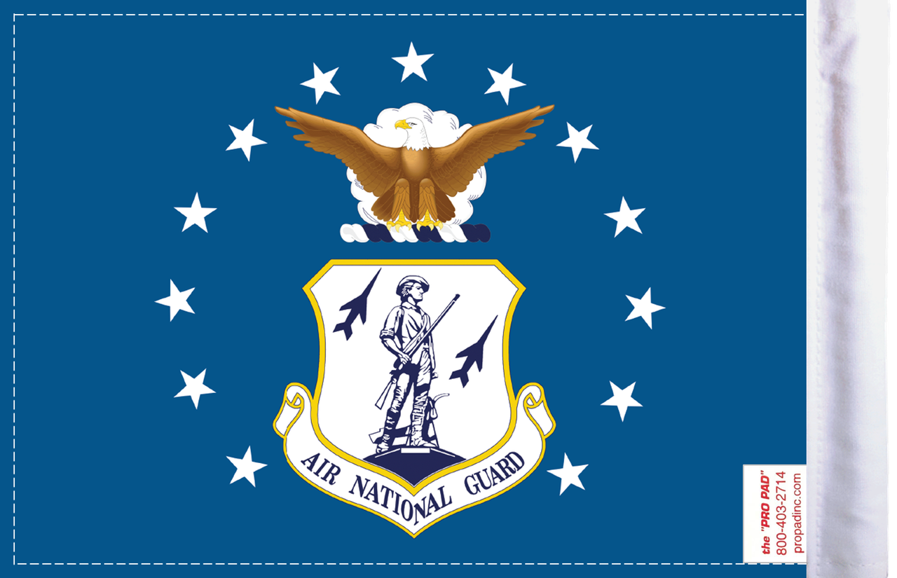 FLG-ARNTGD  Air National Guard 6x9 flag (BACK)