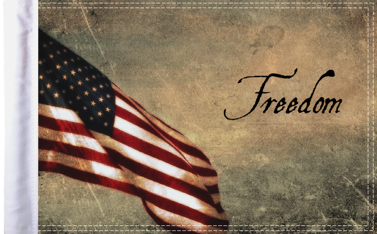FLG-FRDM15 Freedom 10x15 flag