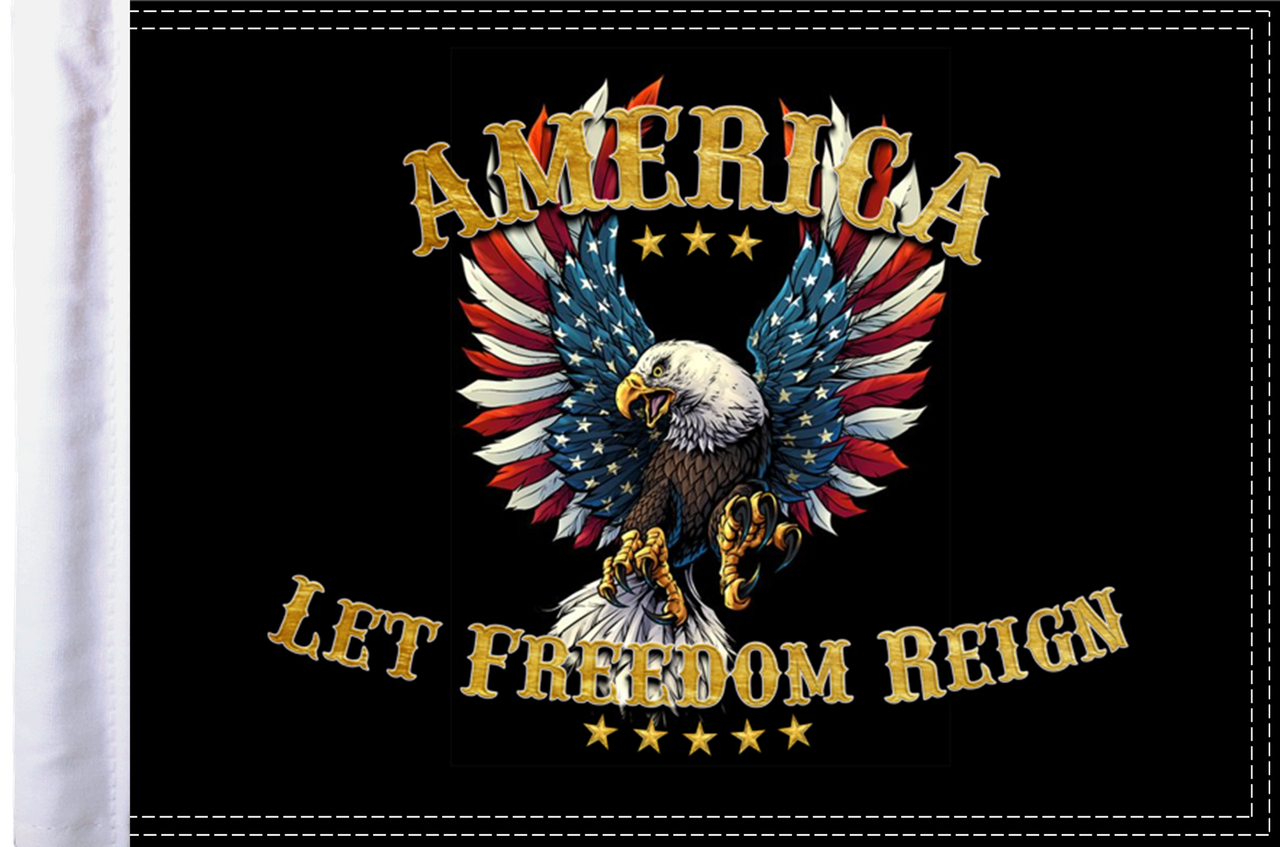 FLG-ALFR15  America Let Freedom Reign flag 10x15