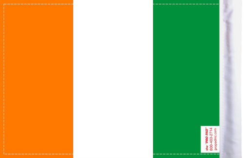 FLG-IRISH Iredland Flag 6x9 (BACK)