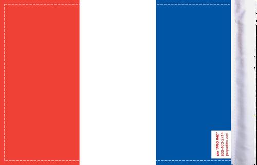 FLG-FRAN France Flag 6x9 (BACK)