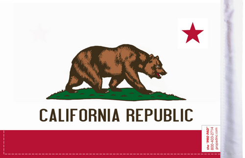 FLG-CAL California Flag 6x9 (BACK)