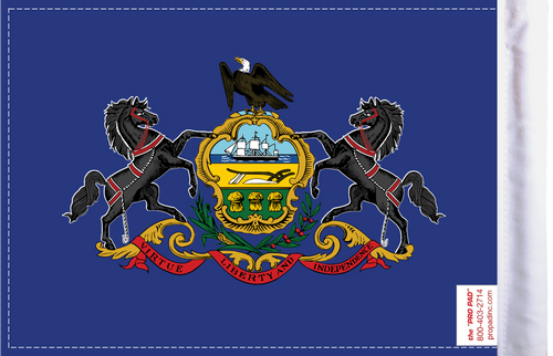 FLG-PA  Pennsylvania Flag 6x9 (BACK)