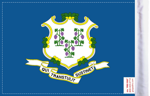 FLG-CT Connecticut Flag 6x9 (BACK)