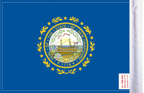 FLG-NH  New Hampshire Flag 6x9 (BACK)