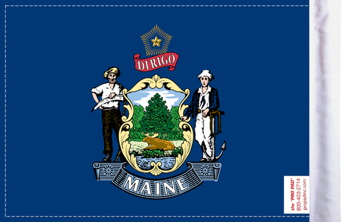 FLG-ME  Maine Flag 6x9 (BACK)