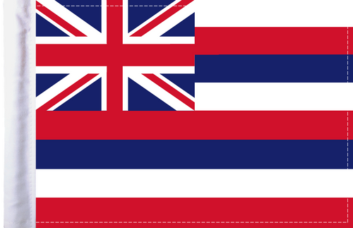 FLG-HI Hawaii Flag 6x9