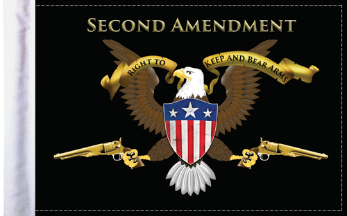 FLG-2AMND Second Amendment 6x9 flag