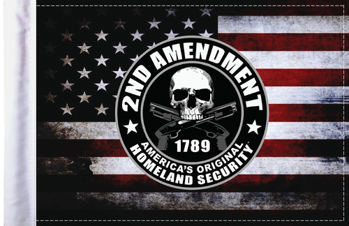 FLG-HS2AMND Homeland Security Second Amendment flag 6x9