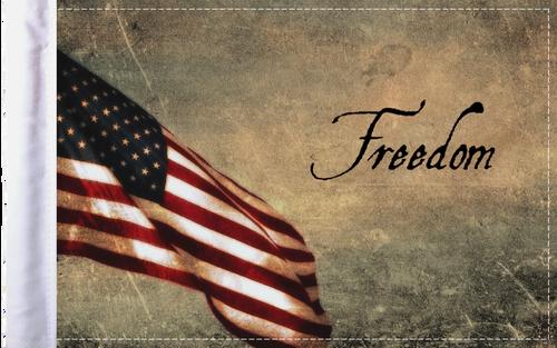 FLG-FRDM  Freedom flag 6x9