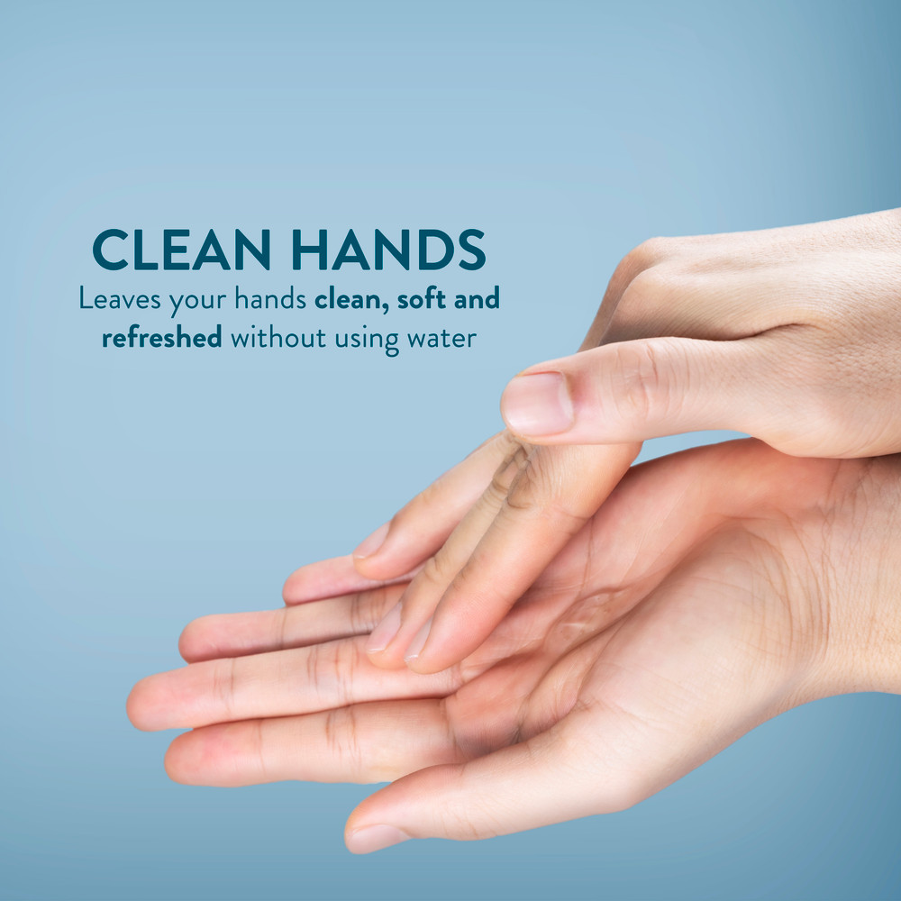 10 oz Anti-Microbial Hand Sanitizer 99.9% Effective With Dispensing Pump 4 Pack