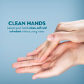 10 oz Anti-Microbial Hand Sanitizer 99.9% Effective With Dispensing Pump 40 Pack