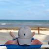 Gray Seahorse Hat