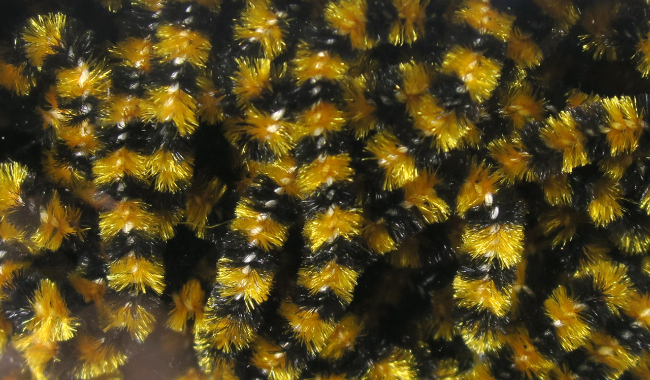 Fly Fish Food Small Stonefly Chenille HUGE Saving for sale online