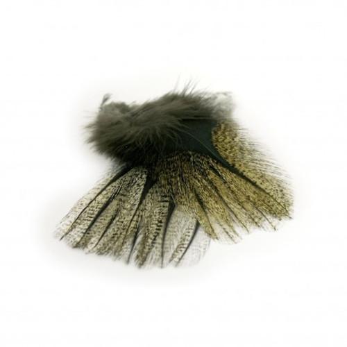 Petitjean PARDO Feathers