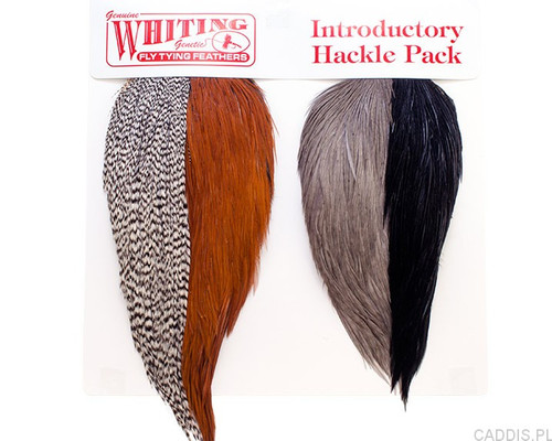 Whiting Farms Introductory Hackle Pack