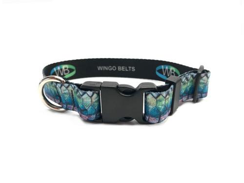 Wingo Dog Collar | DeYoung Tarpon