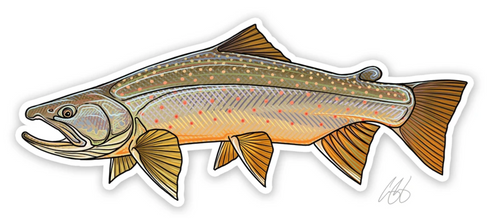 Casey Underwood Bull Trout Decal Sticker
