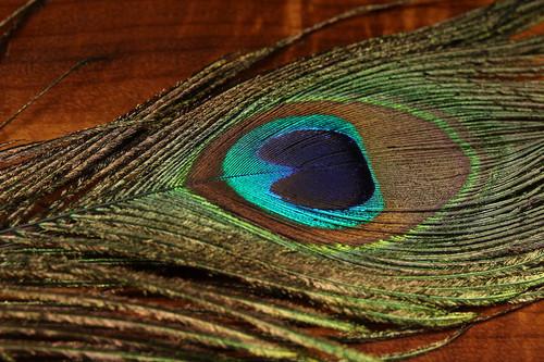 Hareline UV2 Peacock Eyes