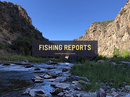 Explore Fishing Reports