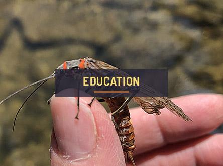 Explore Education