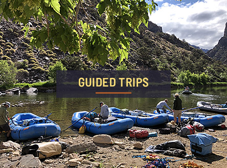 Explore Guided Trips