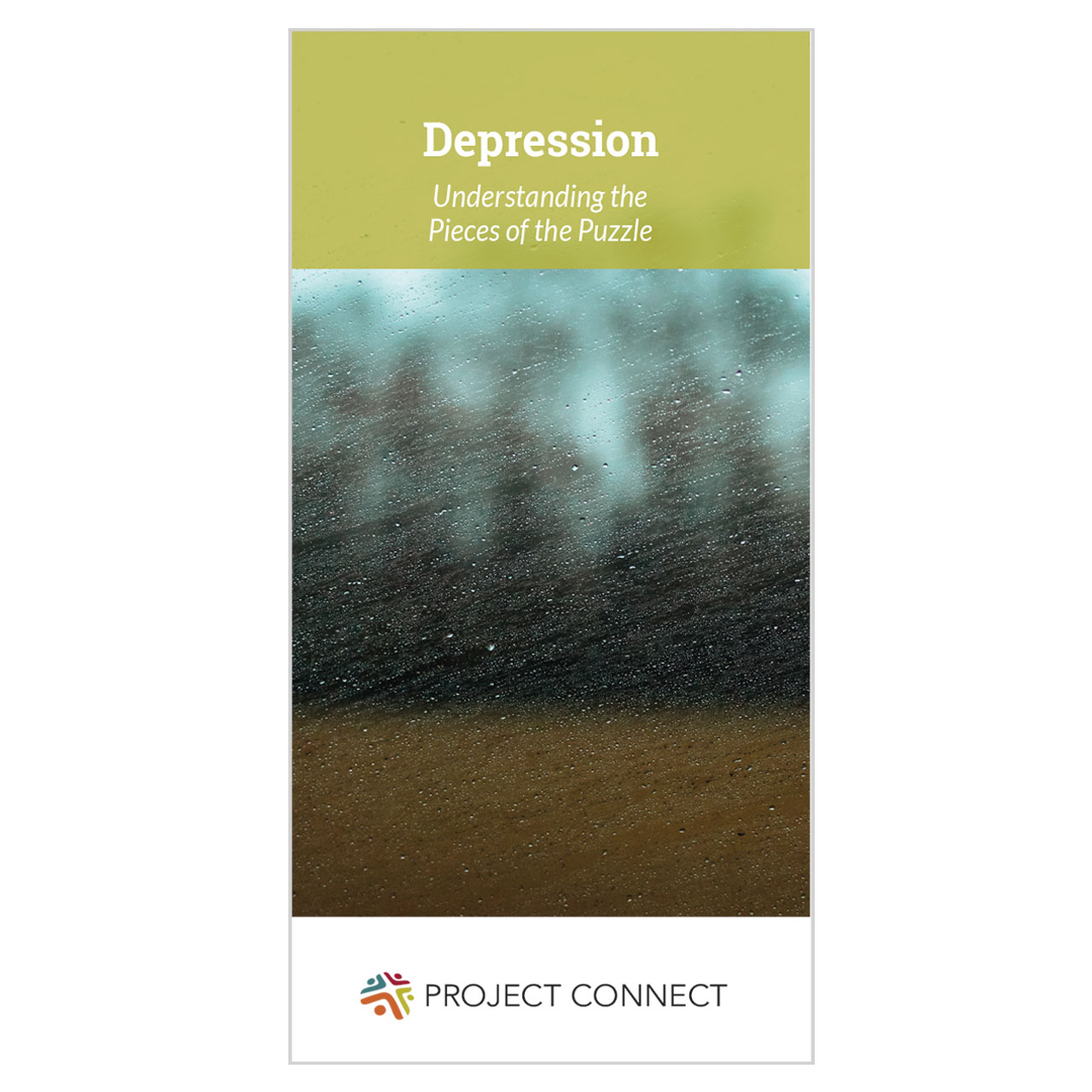 """Depression Understanding the Pieces of the Puzzle"" booklet cover"