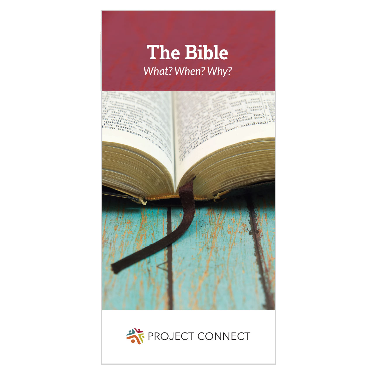"""""""The Bible: What ? When ? Why ?"""" booklet cover"""