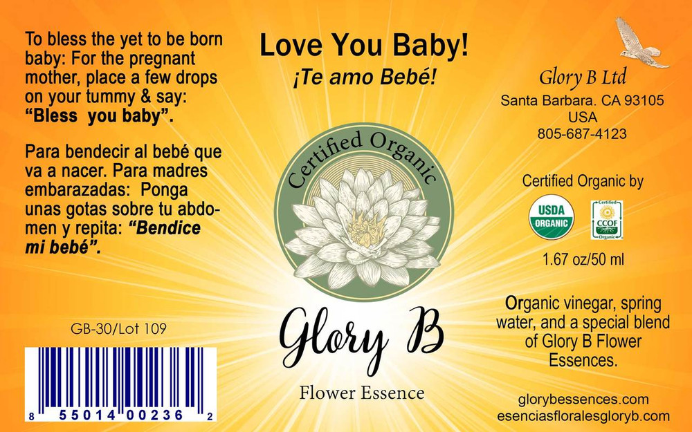 LOVE YOU BABY! .........a daily blessing for the yet to be born baby.