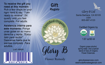 GIFT  by anointing, gain the grace you personally need at this moment