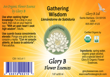 GATHERING WIDSOM ...for when you want to access true heartfelt wisdom